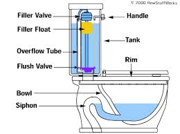 toilet bowl system image